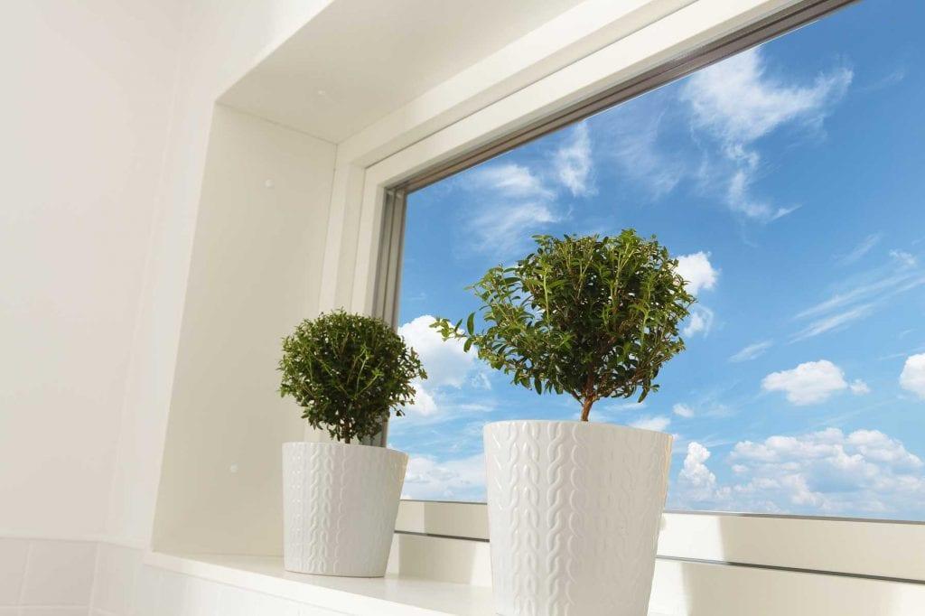 Karisma 5A fönster