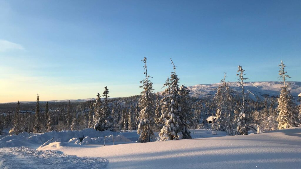 Brf Dalvallen 22 vinterbild 2021